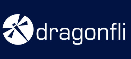 Cybersecurity Solutions | United States | Dragonfli